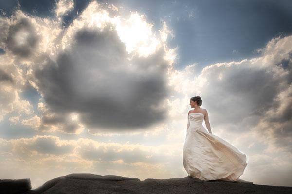 Shari Zellers Photography - Photo