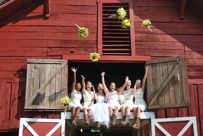 Mountain Laurel Farm - Photo