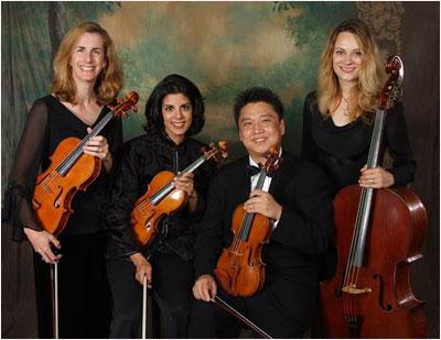 Amadeus String Ensemble, Inc. - Photo