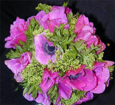 It 39s made of Fuschia Anemones and White Trichillium A Tropical Bouquet