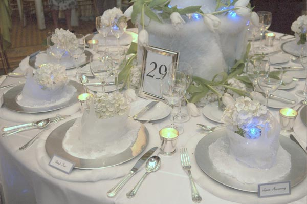 Arctic Winter Wedding Theme Wedding Table Decorations Chair Covers Linens