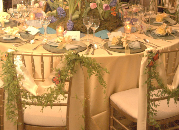Butterfly Theme Wedding Table Decorations Chair Covers Linens and